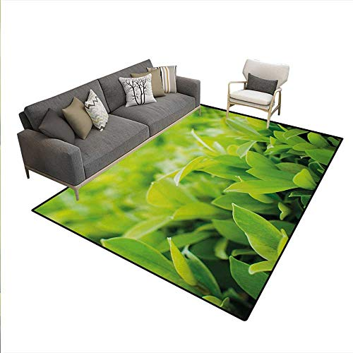 Carpet Vibe Deluxe - Carpet,Lush Green Leaves Sun Open Air Sunny Days Spring Time Happy Vibes Environment,Rug Kid Carpet,Apple Green,6'x8'