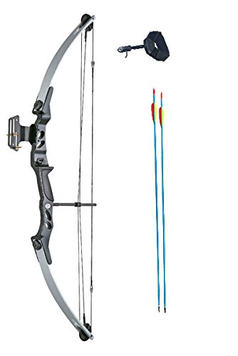 ASD Adult Archery Compound Bow 55lbs Silver & Black With Release Aid and Arrows