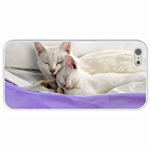 Customized Apple iPhone 5 5S PC Hard Case Diy Personalized DesignCover kitten are sleep White