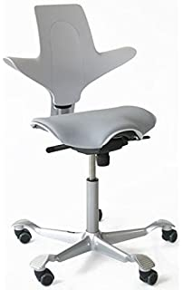 Amazoncom Hag Capisco Chair Puls 8010 Silver Lacquered Frame