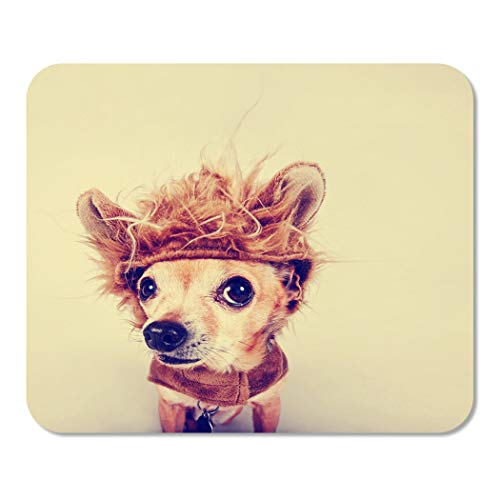 Suike Mousepad Computer Notepad Office Animal Tiny Chihuahua in Lion Costume Toned with Retro Vintage Dog Funny Halloween Home School Game Player Computer Worker 9.5x7.9 Inch]()