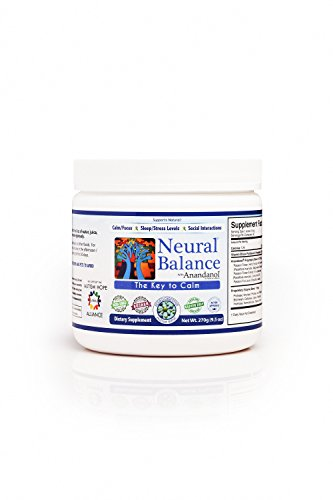 Neural Balance Natural Berry Flavor 9.5 Ounce 60 Servings (Best Vitamins For Autism)
