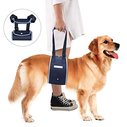 Dog Lift Support Harness Padded Reflective Straps Rehabilitation Assist Sling for Arthritis Old Disabled Injured Dogs Weak Legs Climb Stairs