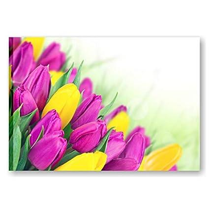 Quadri L&C ITALIA   Colored Tulip 3, Quadro con Fiori Tulipani 70 x ...