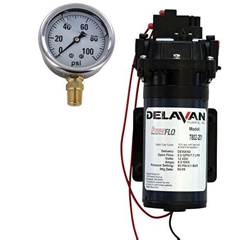 Delavan 7802-201 PowerFlo 12V Demand Diaphragm Pump with 100 PSI Pressure Gauge (Bundle, 2 - Pressure Diaphragm Gauge