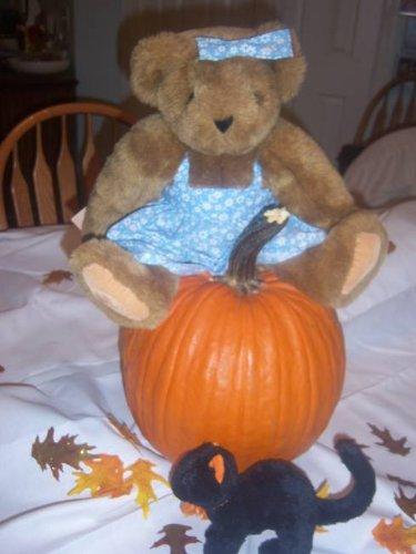 Witch Broom Pumpkin (The Pumpkin Witch (Sunshine)