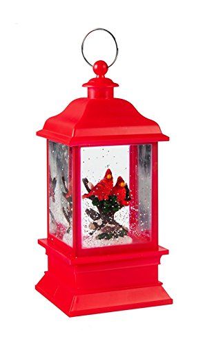 Cypress Home Red Cardinal Led Water Lantern