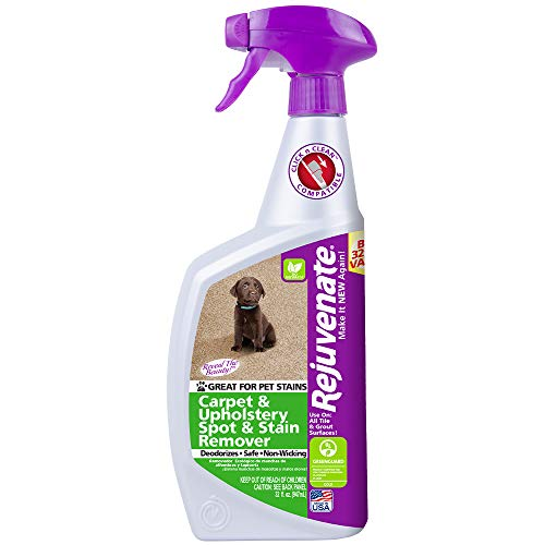 Rejuvenate Professional Strength Enzyme-Powered Carpet & Upholstery Spot and Stain Remover Pet Dog and Cats