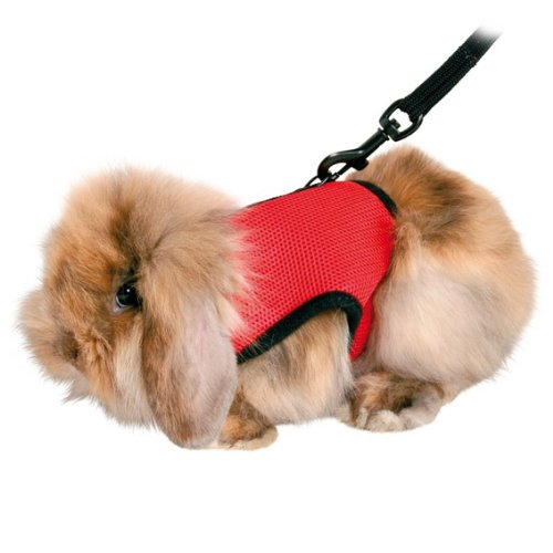 Trixie Pet Products 61512 1.20 m Guinea pig Soft Harness with Leash-Nylon, Various, 18-25cm