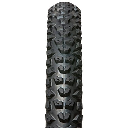 panaracer Swoop Tire with Wire Bead, 26 x 2.1-Inch (Panaracer Bicycle Tires)