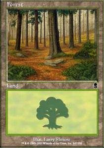 Magic: the Gathering - Forest - Odyssey - (Gathering Odyssey Foil)
