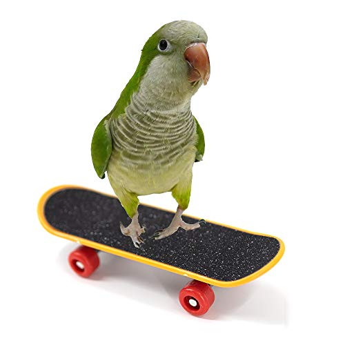 YINGGE Bird Climbing Toys Mini Scrub Scooter Skateboard Training Toys for Pet Small and Medium Parrots Parakeets…