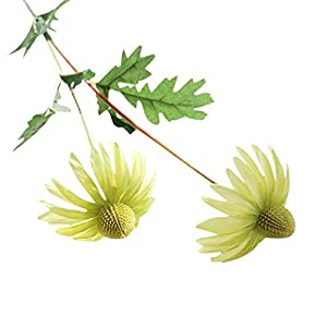 Leegor 1 Bouquet 2 Heads Real Touch Artificial Aster Chrysanthemum Fake Flowers Simulation Floral Home Wedding Decor Hotel Party Event Decorations Photography Show Props (green) 18