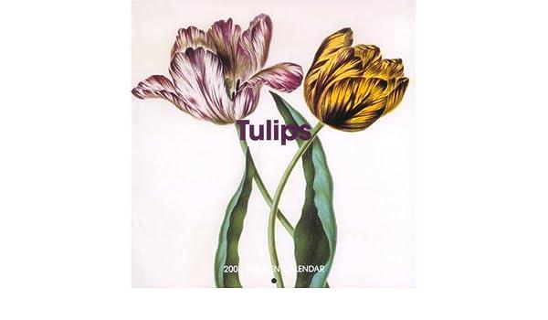The Tulips Wall Calendar