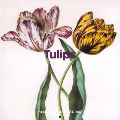 The Tulips Wall Calendar