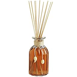 Pier 1 Imports concentrated Reed Diffuser (Coconut Isles)