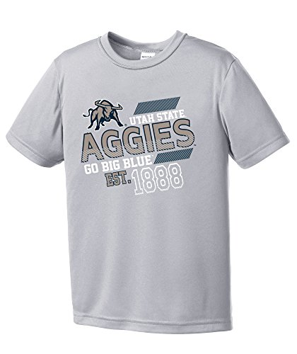 (NCAA Utah State Aggies Youth Boys Offsides Short sleeve Polyester Competitor T-Shirt, Youth Large,Silver)