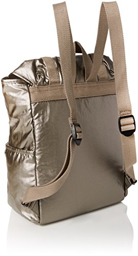 Kipling Experience Women's L34 Kipling Gold Pewter Women's S Backpack Metallic 5qgSwWA4x