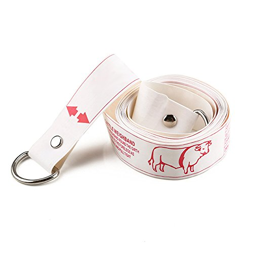 Wintape Professional Cattle Weight (KG) & Height (cm) Tape Measure
