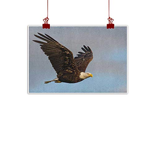 Anyangeight Wall Painting Prints Eagle,Photo of a Hunter Bird Flying in Open Sky Majestic Animal Wildlife Freedom, Pale Blue Dark Yellow 36