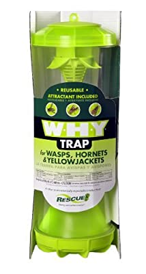 Rescue - WHY Trap Wasp