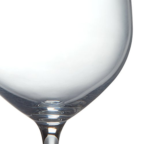 Stone & Beam Traditional White Wine Glass, 16-Ounce, Set of 6