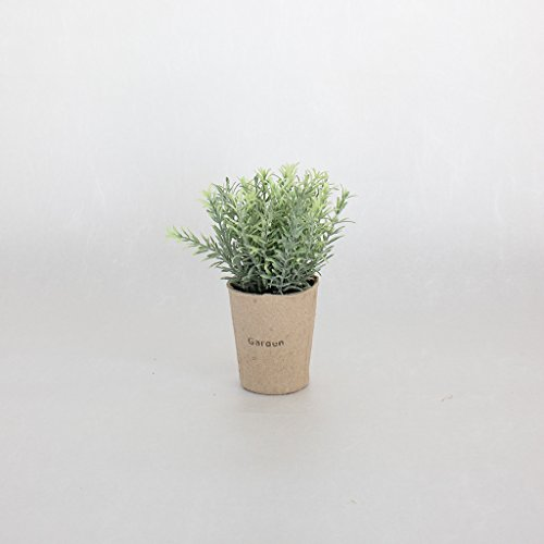 Time Concept Decor Imitation Rosemary Miniature Plant with Paper Pot - Artificial Indoor/Outdoor Houseplant
