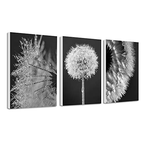 Bedroom Art Canvas Wall Art Dandelion Black and white Paint Picture for Living Room Flower Flora Home Bedroom Decoration Modern Framed Artwork Ready to Hang for Home Decoration Kitchen Office Wall Dec (With Wall Art Paint)