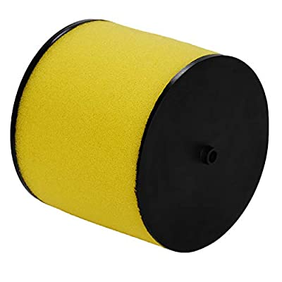 HIFROM ATV Air Filter Element Cleaner Replacement for Honda TRX400EX TRX400X TRX420FA1 TRX420FA2 TRX420FE TRX420FM TRX420TM TRX420TE TRX500FM TRX500FE TRX500FM Replace 17254-HN1-000 (Pack of 2): Home & Kitchen