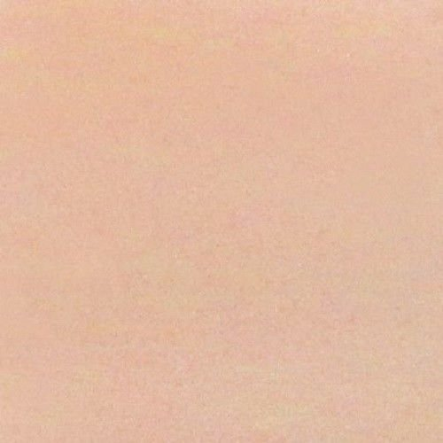 SNS DIP POWDER NUDE #19 by SNS Nails