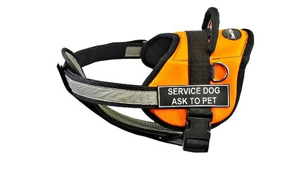 Dean & Tyler – 71,12 cm de Servicio Perro Ask To Pet Arnés con ...