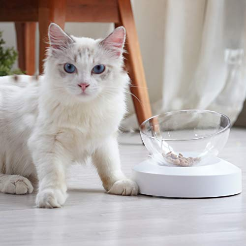 ELSPET Raised Cat Dog Bowl/Cat Dish/Elevated Cat Food Water Bowl, 0°/20° Tilted Transparent Raised Pet Feeding Bowl with Anti-Slip Base for Cat and Small Dog (Cat Single Bowl/Cat Double Bowls)