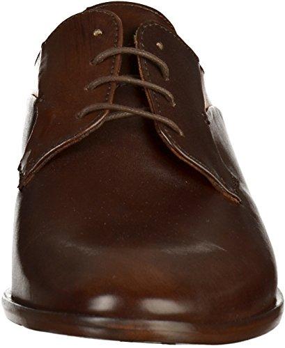Salamander 31-52725 Mens Business Shoes Brown n18Wk