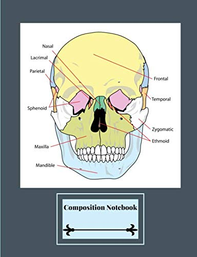 (Composition Notebook: Labeled Human Skull Diagram - Facial Bones - Gray Background)