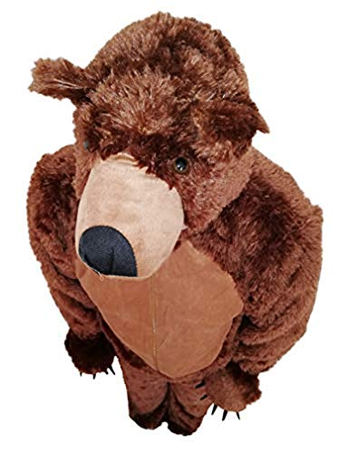 Bear Costume Men (Fantasy World Women's F67 Brown Bear Costume 12-14 /)