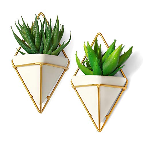 California Home Goods Modern Hanging Planter Pots (2-Pack), Small Decorative Wall Planters for Cactus Decor & Hanging Plants, Wall Hanging Ceramic Planter with Brass Wire Frame, White Plant Decor