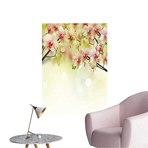 Vinyl Wall Stickers Yellow and red Orchid Flowers on defocused Background Perfectly Decorated,20