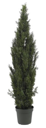 Nearly Natural 5292 Mini Cedar Pine Tree, 6-Feet, Green by Nearly Natural