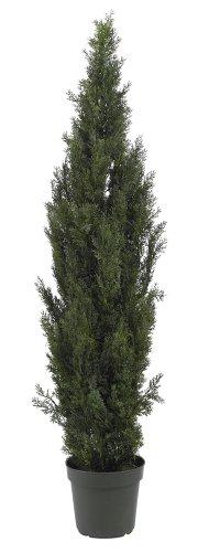 (Nearly Natural 5292 Mini Cedar Pine Tree, 6-Feet, Green)