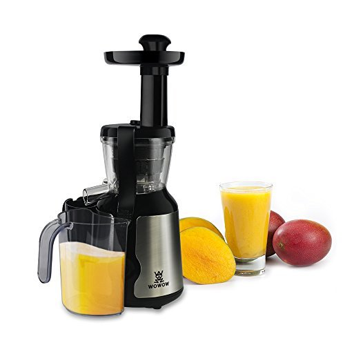 Juicer Slow Masticating Juicer Extractor, Wowow Cold Press Juicer Machine, Quiet Motor and Reverse Function, with Juice Jug and Brush to Clean Conveniently, High Nutrient Fruit and Vegetable Juice