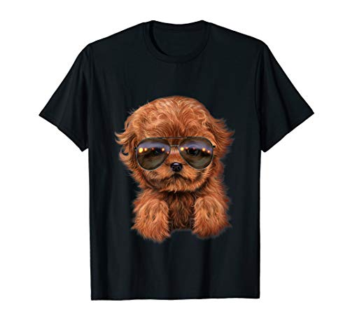 Red Apricot Poodle Puppy in Aviator Sunglass, Dog T-Shirt