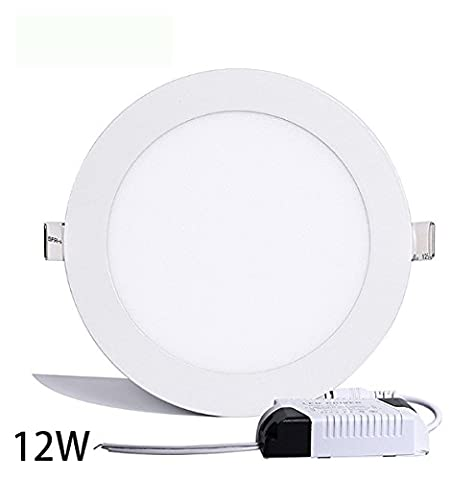Round Ceiling Light,Hann Ultra-thin Recessed Downlight Lamp,LED Bathroom Bedroom Lighting Fixtures 12W 960lm,4000K,80W Incandescent Equivalent,Cut Hole 6.1 Inch,AC100-120V,with LED Driver