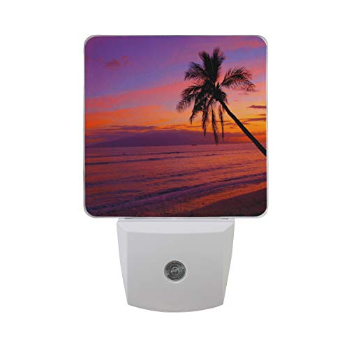 Night Light Red Hawaii Sunset Led Light Lamp for Hallway, Kitchen, Bathroom, Bedroom, Stairs, DaylightWhite, Bedroom, Compact