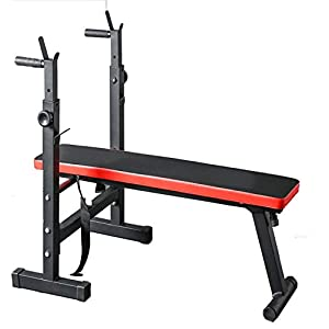Zoogamo Adjustable Folding Fitness Weight Bench and Barbell Rack for Full Body Workout- Strength Training -Multi-Purpose