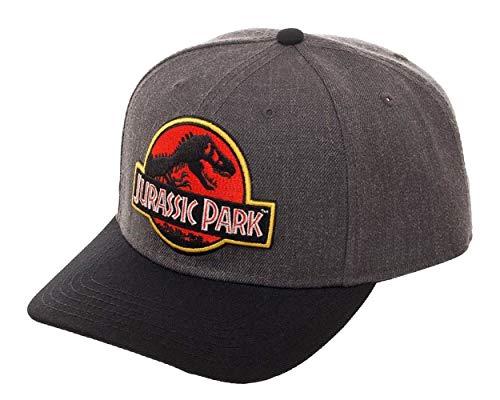 Jurassic Park Hat Classic Logo Curved Snapback Cap Grey