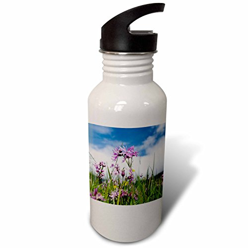 3dRose Danita Delimont - Flowers - Ragged Robin Wildflowers. Island Vagar, Faroe Islands, Denmark - Flip Straw 21oz Water Bottle (wb_277340_2)