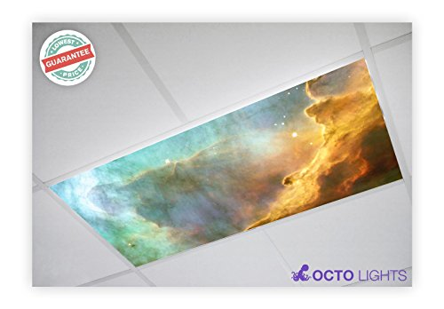 Astronomy 003 2x4 Flexible Fluorescent Light Cover ()