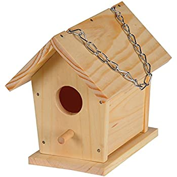 Build a Bird House