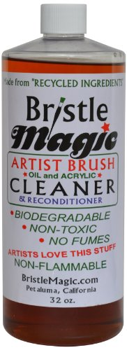 How to buy the best bristle magic?