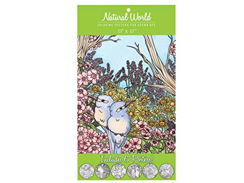 Natural World Adult Coloring Poster Set - Pack of 24